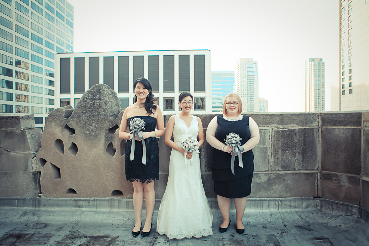 Chicago Wedding Photography Chicago Skyline Bride and Bridesmaids