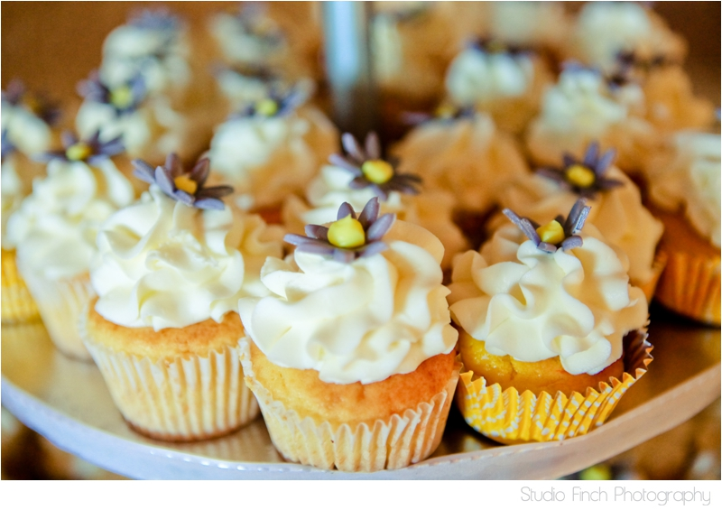Cupcakes Wedding Four Rivers Environmental Center Chicago Wedding Photographer