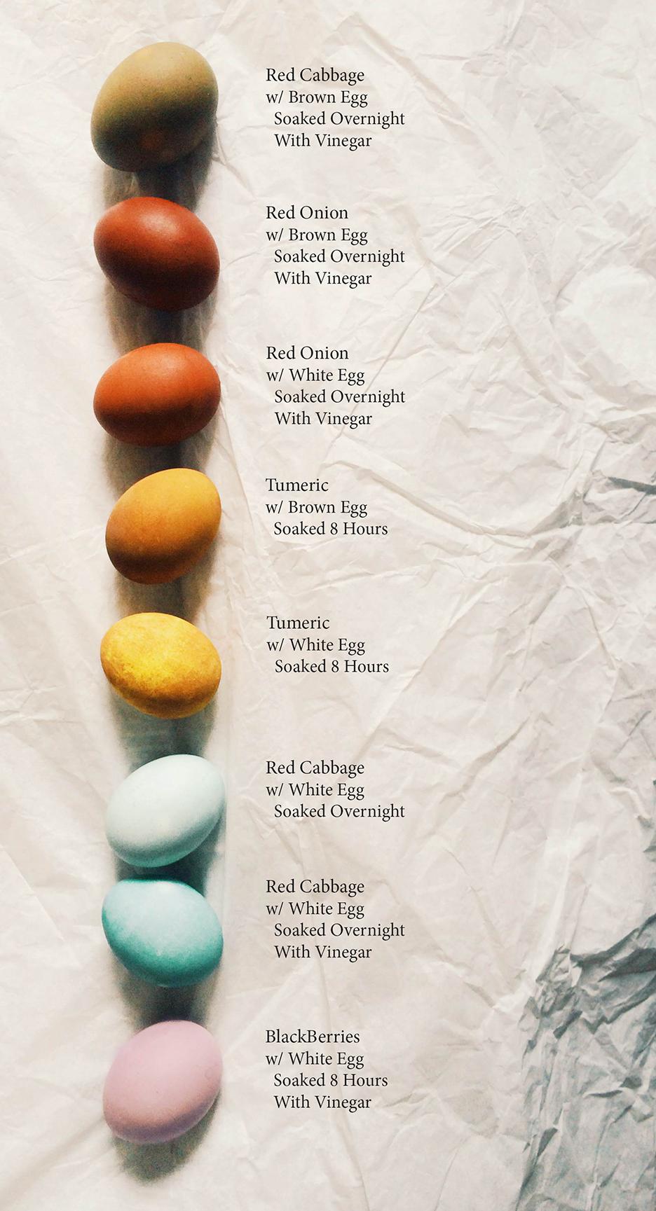 Egg Dye Info