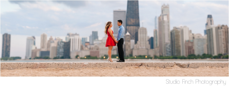 Studio Finch Chicago Engagement Wedding Photography_0023