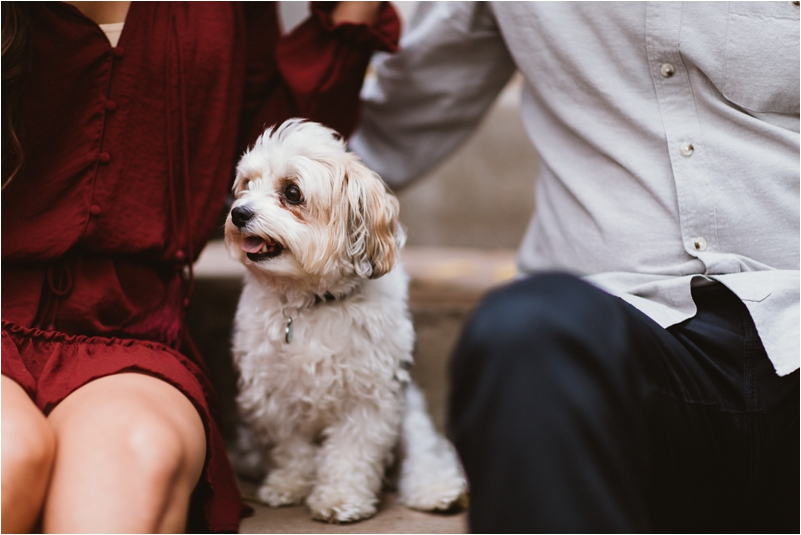 Chicago Engagement Session Wedding Photographer Wicker Park Cutest Dog Ever Studio Finch_0007